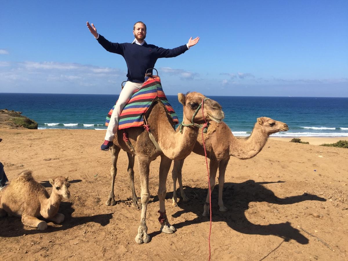 Camel Tangier_1