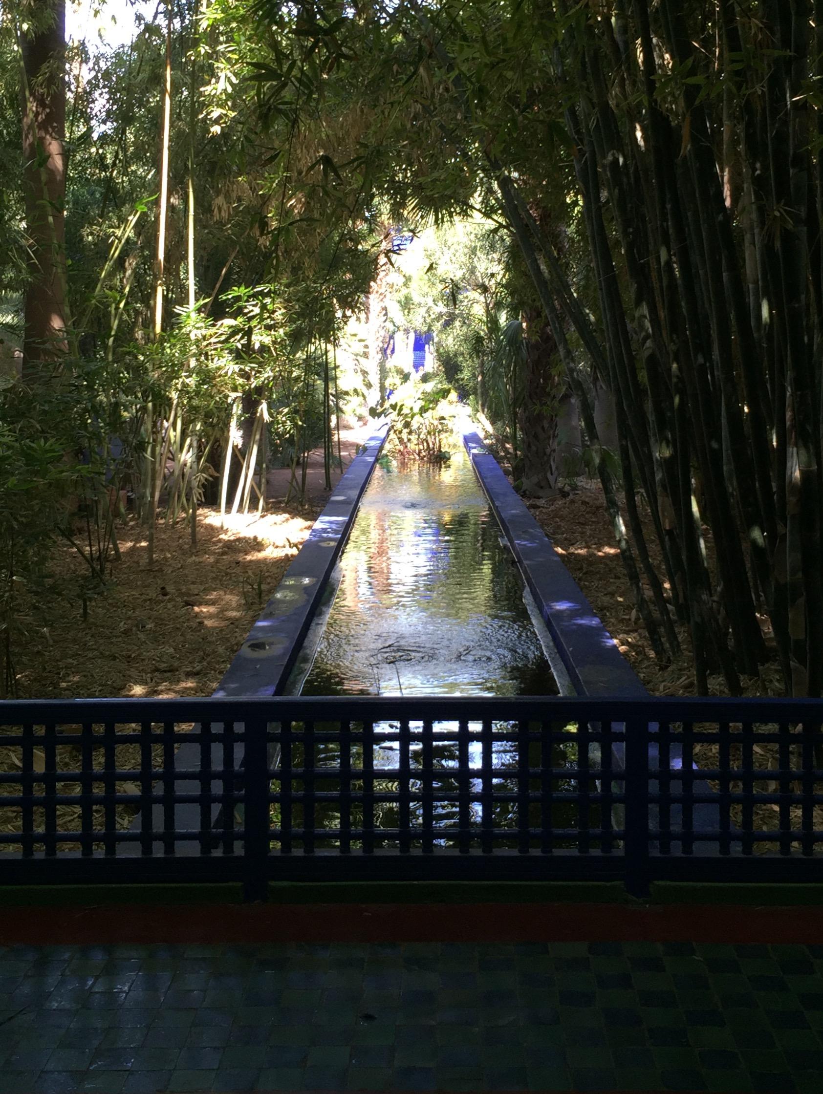 Majorelle Garden 2